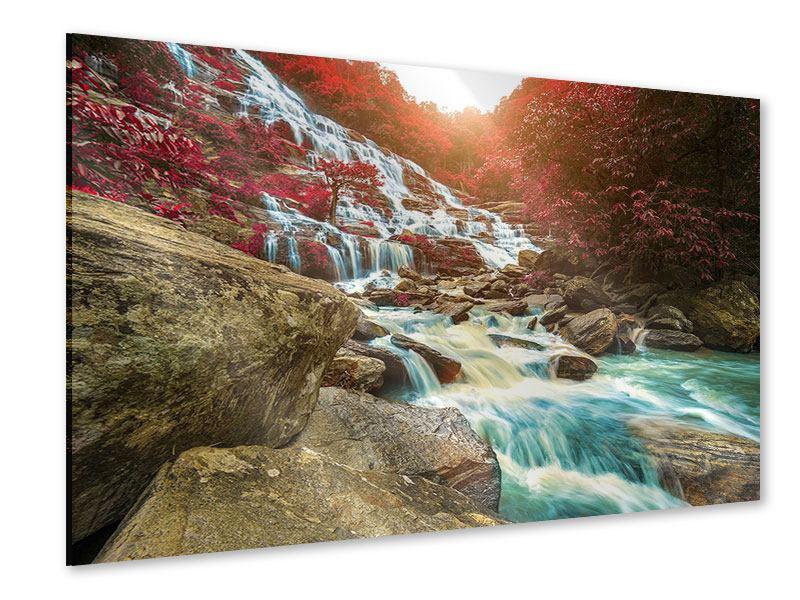 Acrylglasbild Exotischer Wasserfall