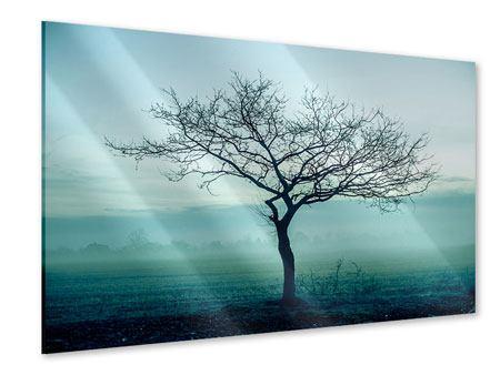 Acrylglasbild Der Zauberbaum