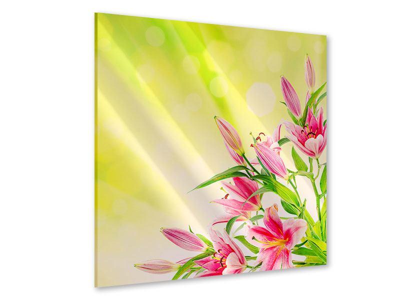 Acrylglasbild Lilienstrauss