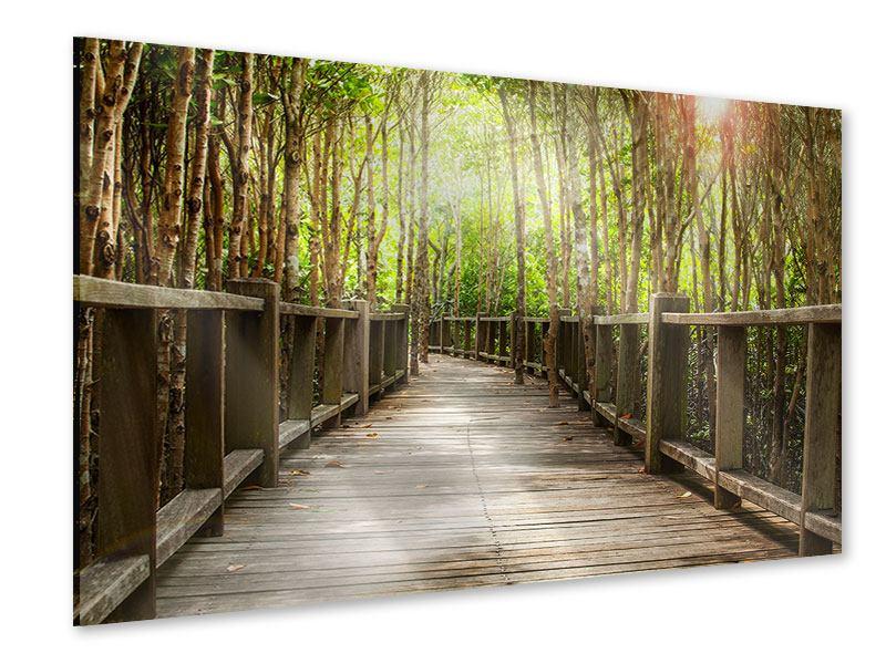 Acrylglasbild Hölzerne Brücke