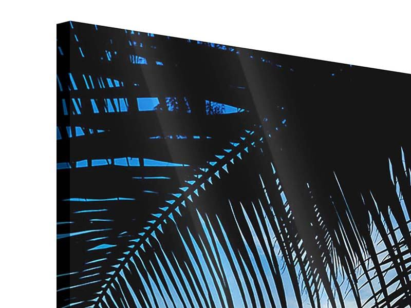 Acrylglasbild Durch die Palme