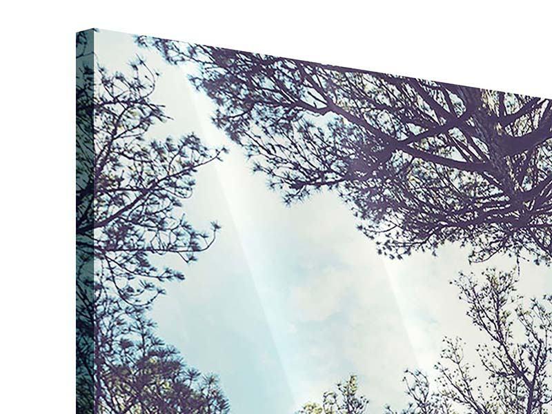 Acrylglasbild High in the Sky