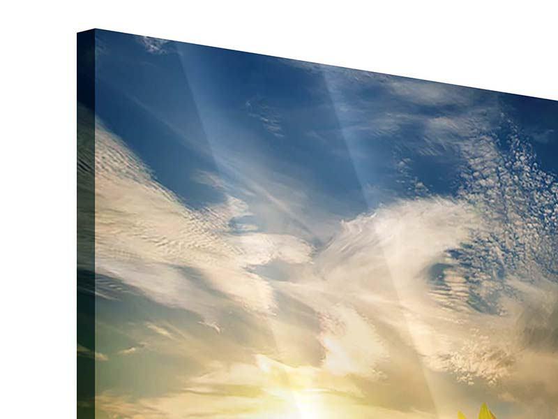 Acrylglasbild Sonnenblumen im Sonnenuntergang