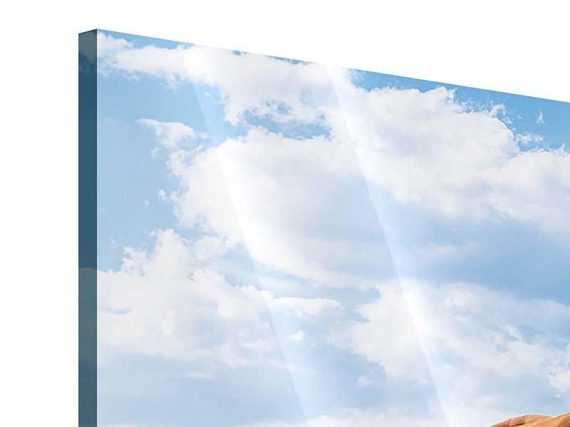 Acrylglasbild Auf der Alm