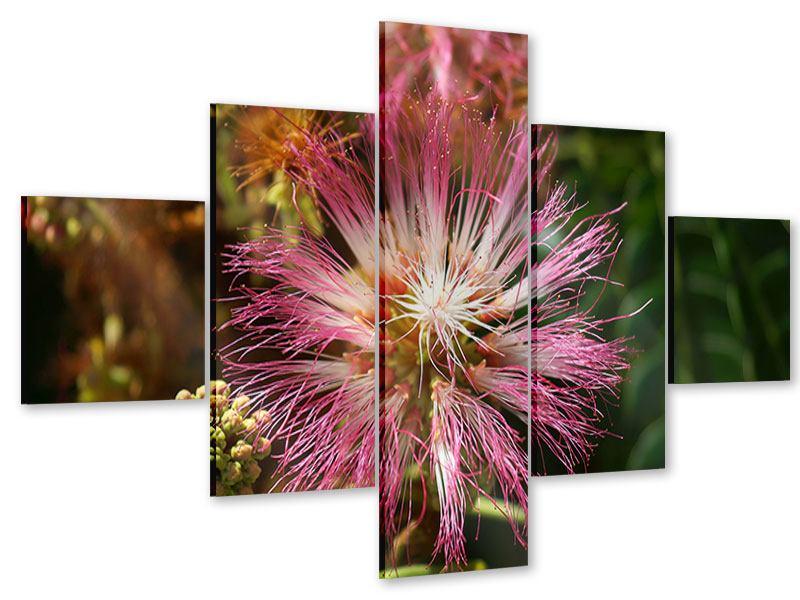Acrylglasbild 5-teilig Die Regenbaumblüte