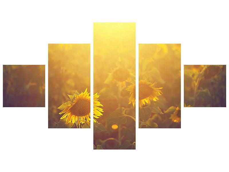 Acrylglasbild 5-teilig Sonnenblumen im goldenen Licht