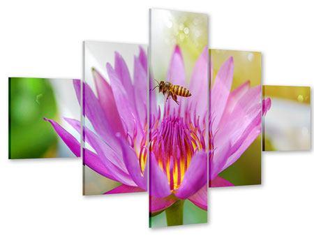 Acrylglasbild 5-teilig Die Lotus mit Biene