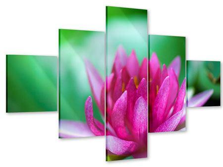Acrylglasbild 5-teilig Lotus in Pink