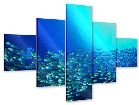 Acrylglasbild 5-teilig Fischschwarm