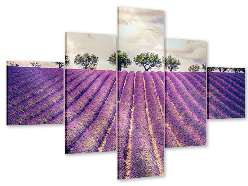 Acrylglasbild 5-teilig Das Lavendelfeld