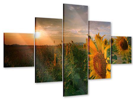 Acrylglasbild 5-teilig Sonnenblumen im Lichtspiel