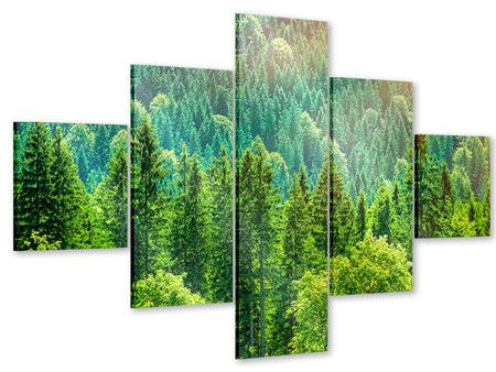 Acrylglasbild 5-teilig Der Waldhügel