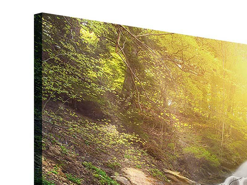 Acrylglasbild 5-teilig Naturschönheit