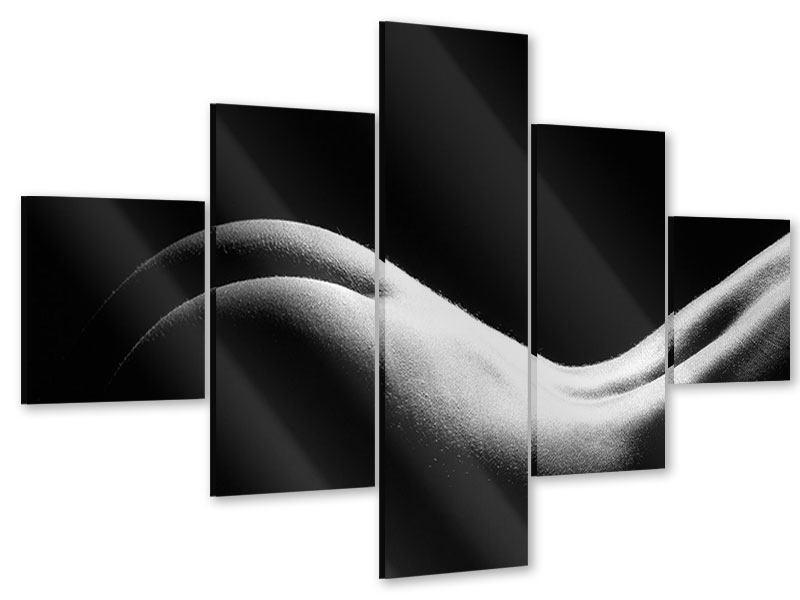 Acrylglasbild 5-teilig Nude