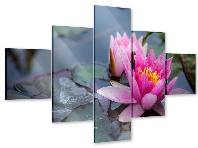 Acrylglasbild 5-teilig Das Seerosenduo