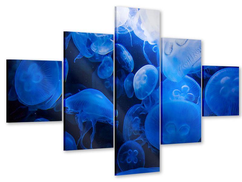 Acrylglasbild 5-teilig Quallen