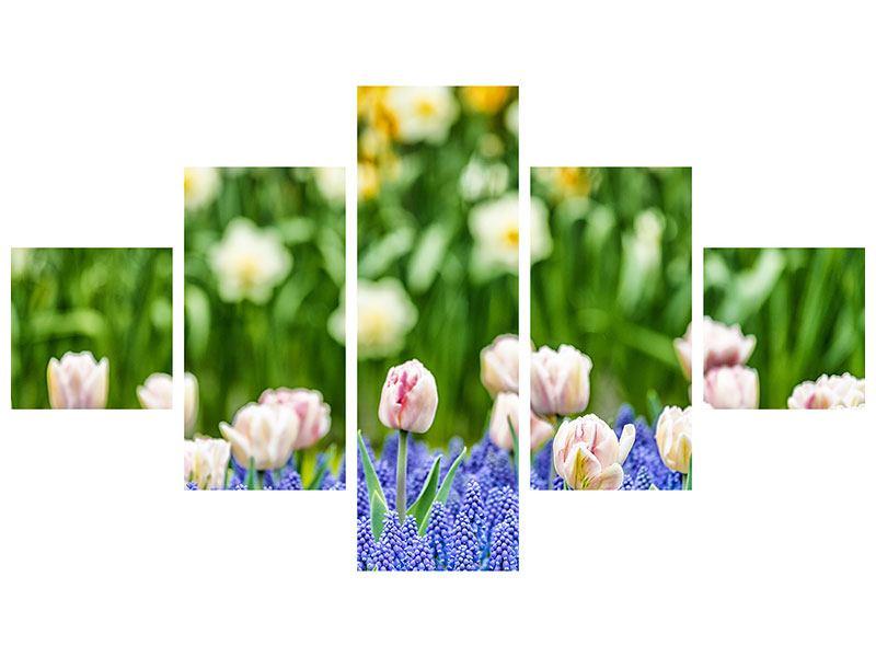 Acrylglasbild 5-teilig Ein Garten mit Tulpen