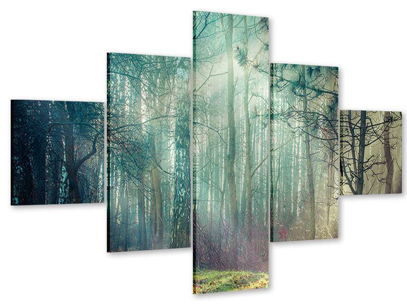 Acrylglasbild 5-teilig Pinienwald