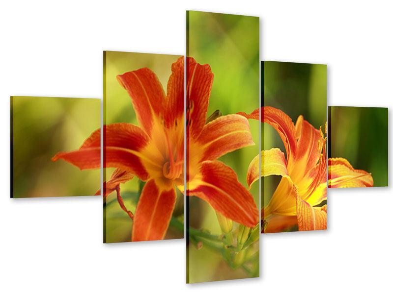 Acrylglasbild 5-teilig Natural Lilien