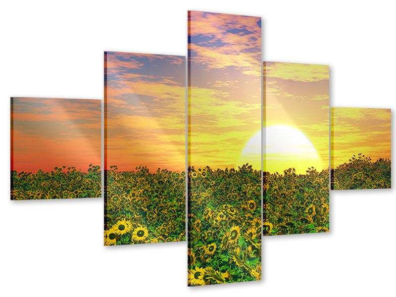Acrylglasbild 5-teilig Blumenpanorama bei Sonnenuntergang
