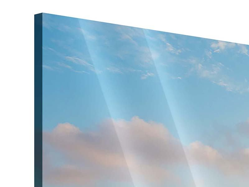 Acrylglasbild 5-teilig Das blühende Lavendelfeld