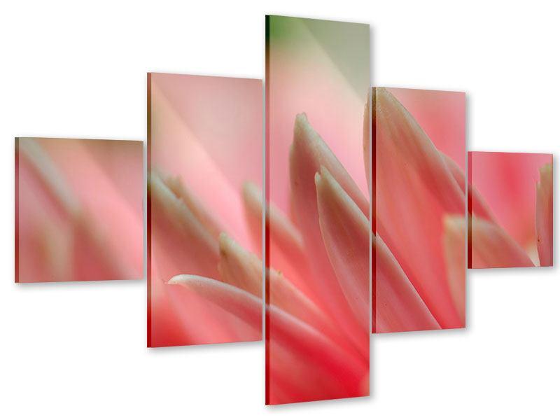 Acrylglasbild 5-teilig Close Up einer Blüte