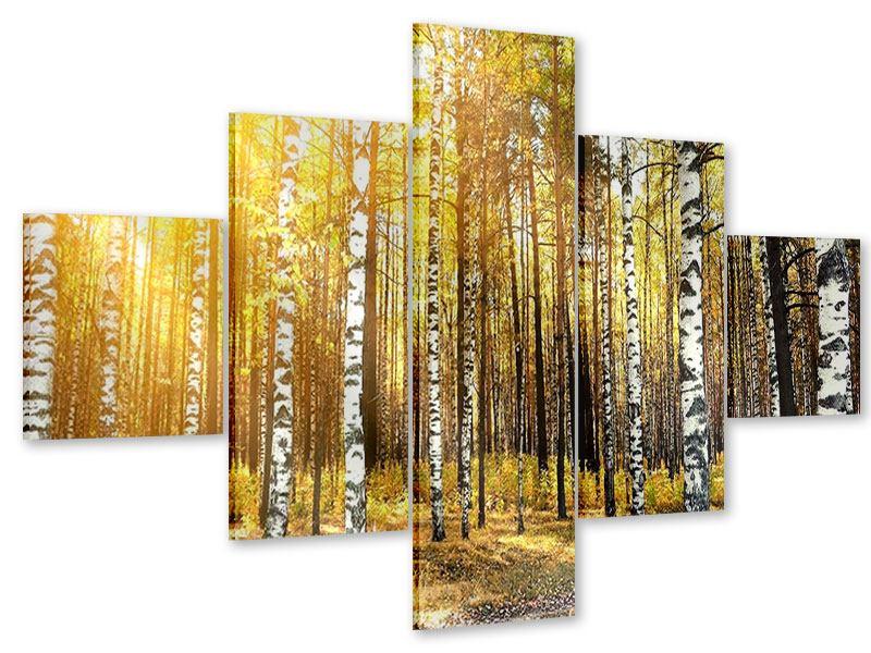 Acrylglasbild 5-teilig Birkenwald