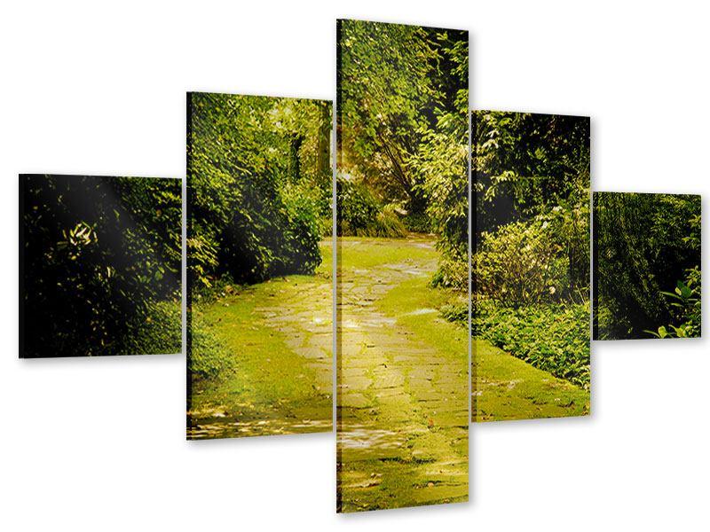 Acrylglasbild 5-teilig Der bemooste Weg