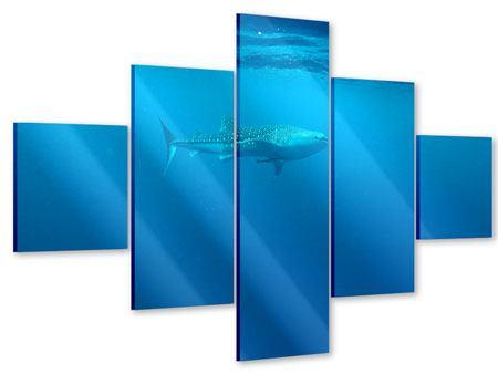 Acrylglasbild 5-teilig Der Walhai