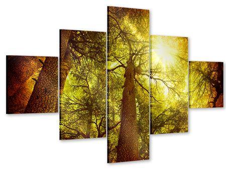 Acrylglasbild 5-teilig Cedar Baum