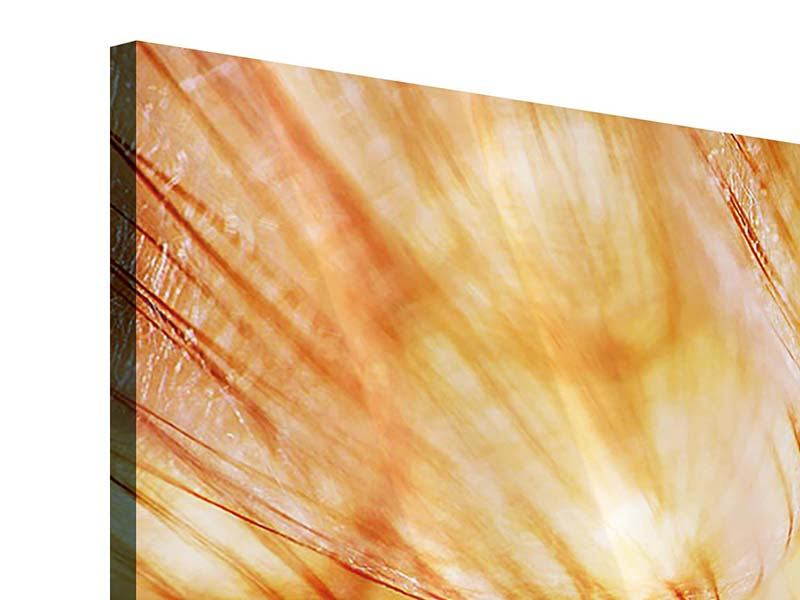 Acrylglasbild 5-teilig Close Up Pusteblume im Licht