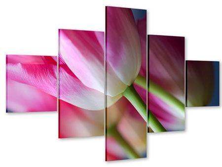 Acrylglasbild 5-teilig Makro Tulpen