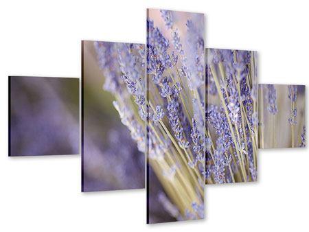 Acrylglasbild 5-teilig Lavendel XXL