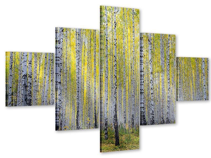 Acrylglasbild 5-teilig Herbstlicher Birkenwald