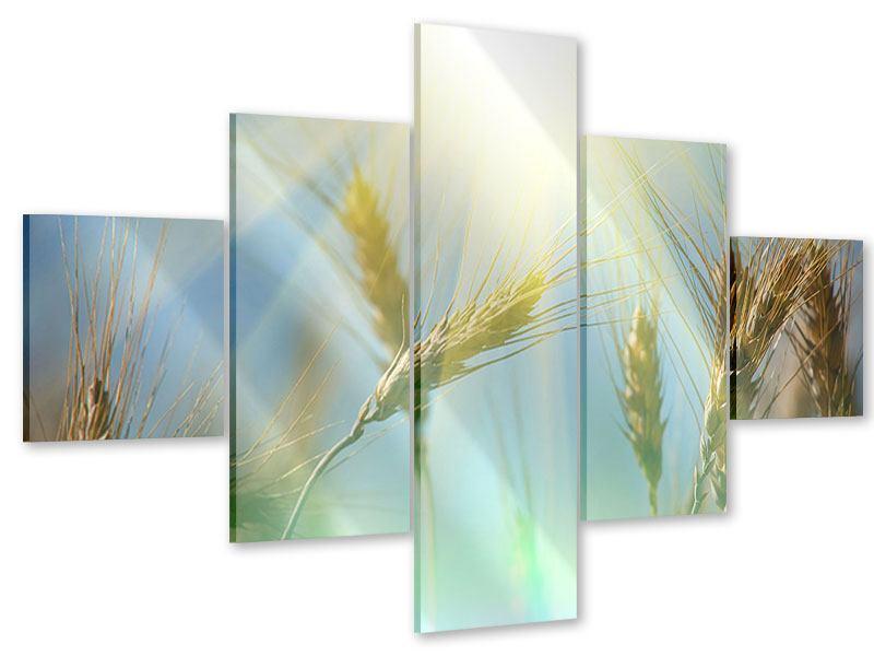 Acrylglasbild 5-teilig König des Getreides