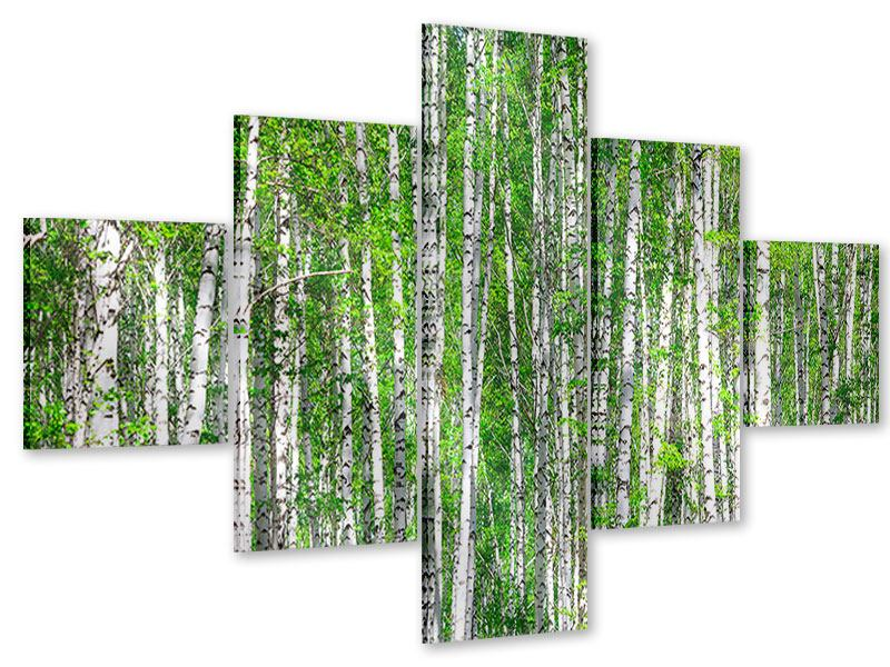 Acrylglasbild 5-teilig Der Birkenwald