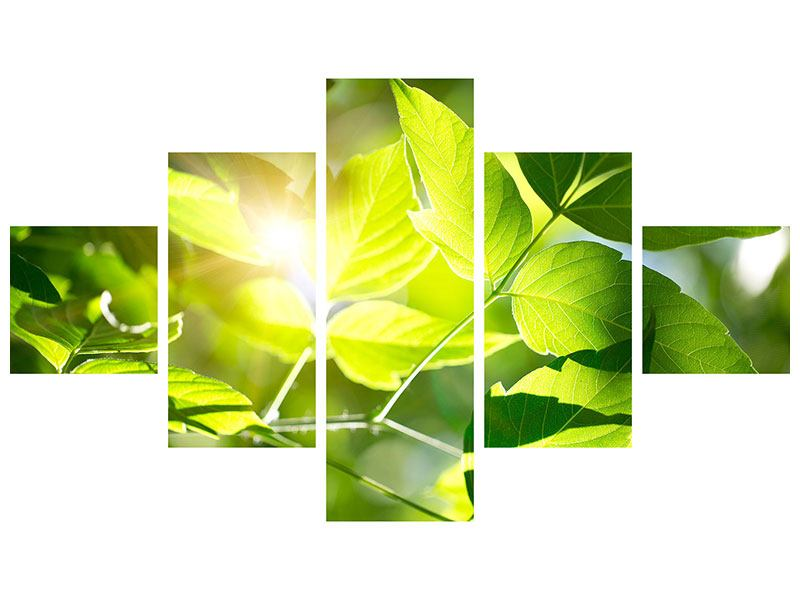 Acrylglasbild 5-teilig Es grünt so grün