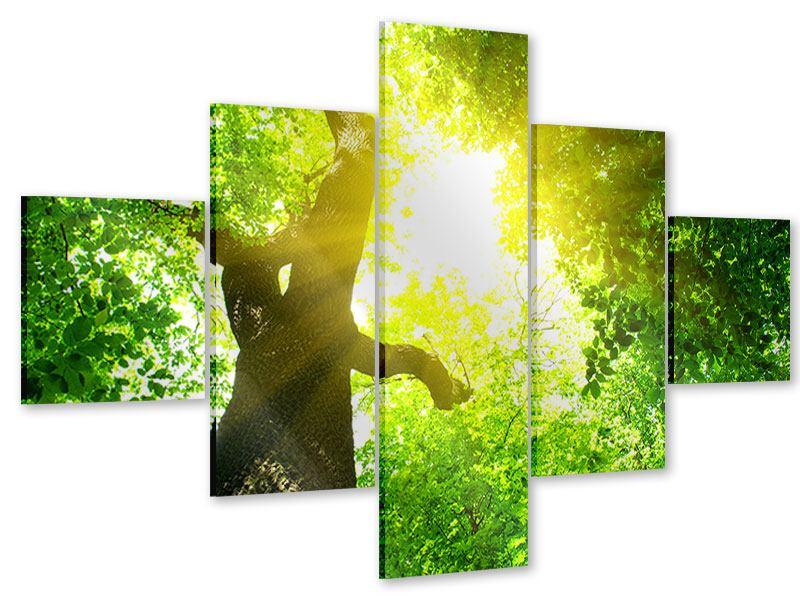 Acrylglasbild 5-teilig Baum