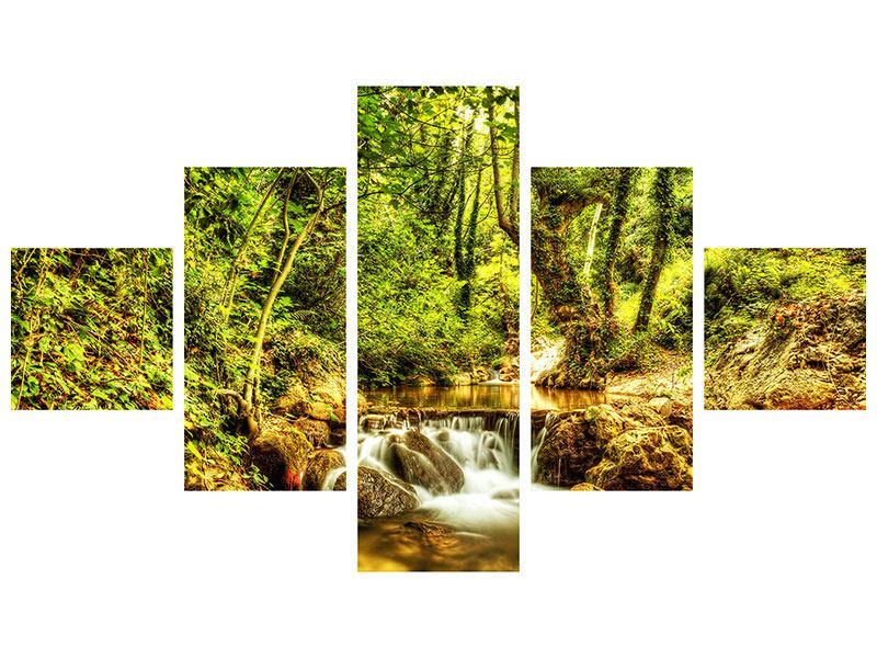 Acrylglasbild 5-teilig Wasserfall im Wald