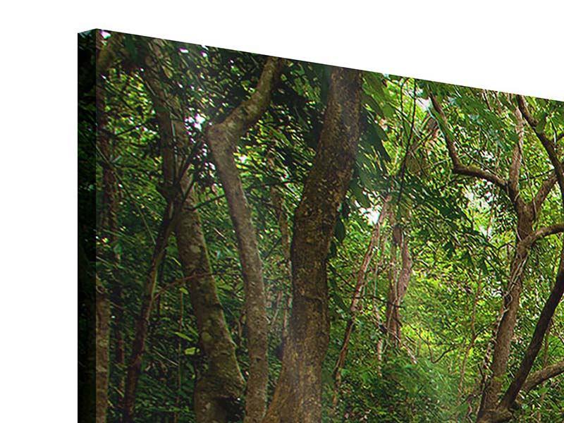 Acrylglasbild 5-teilig Die 7 Stufen