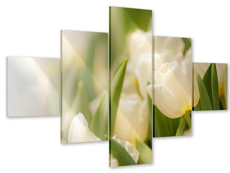 Acrylglasbild 5-teilig Tulpenperspektive