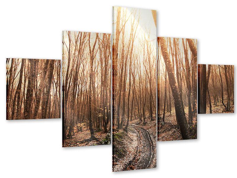 Acrylglasbild 5-teilig Der kahle Wald