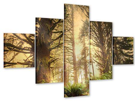 Acrylglasbild 5-teilig Sonnenuntergang im Dschungel