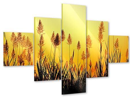 Acrylglasbild 5-teilig Die Blumen des Feldes