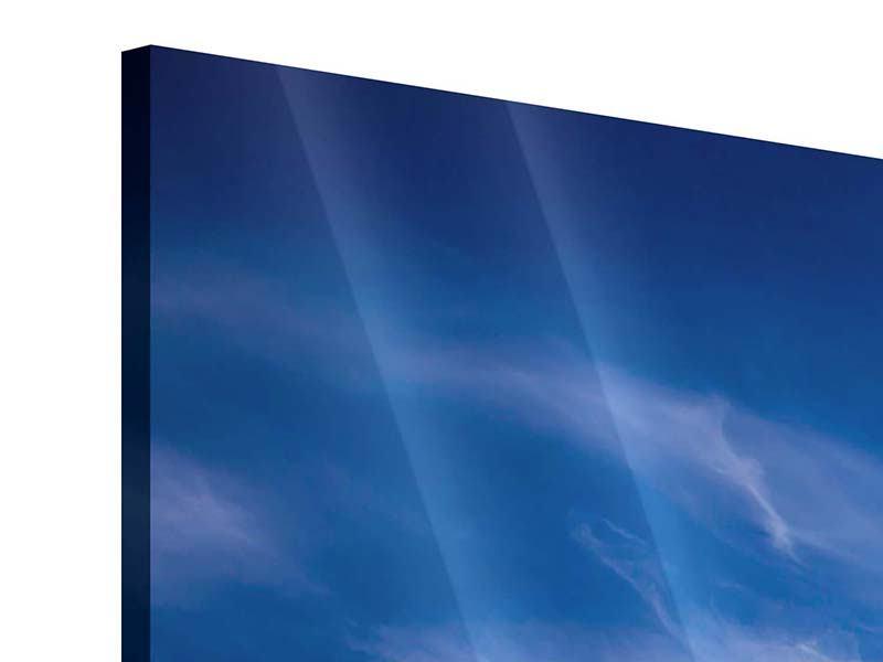 Acrylglasbild 5-teilig Schleierwolken