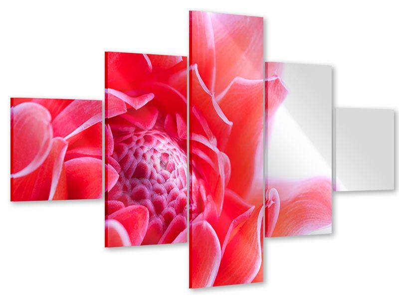 Acrylglasbild 5-teilig Etlingera XXL