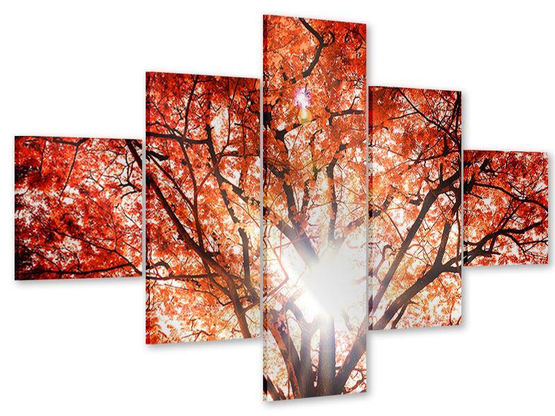 Acrylglasbild 5-teilig Herbstlicht