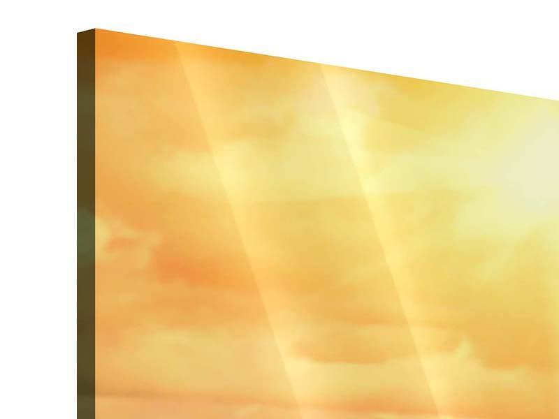 Acrylglasbild 5-teilig Goldenes Licht für Sonnenblumen