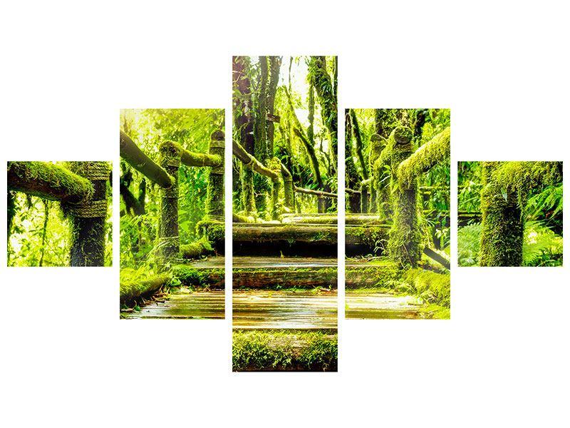 Acrylglasbild 5-teilig Moos