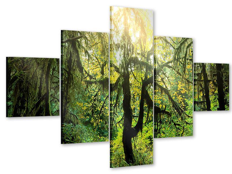 Acrylglasbild 5-teilig Verträumter Wald